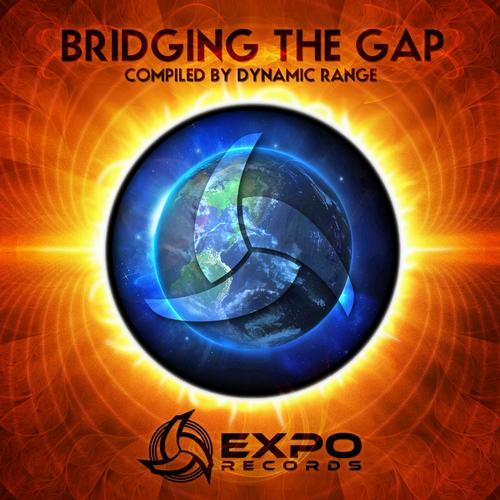 VA - Bridging The Gap